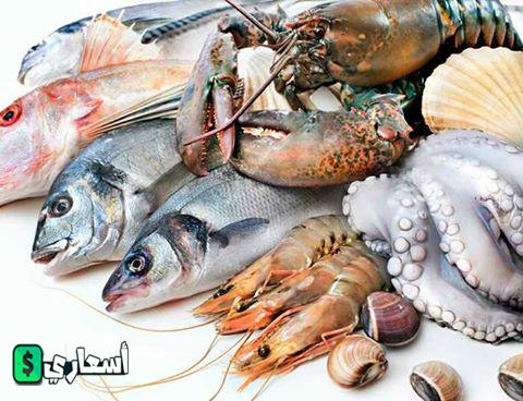 اسعار الاسماك فى مصر اليوم