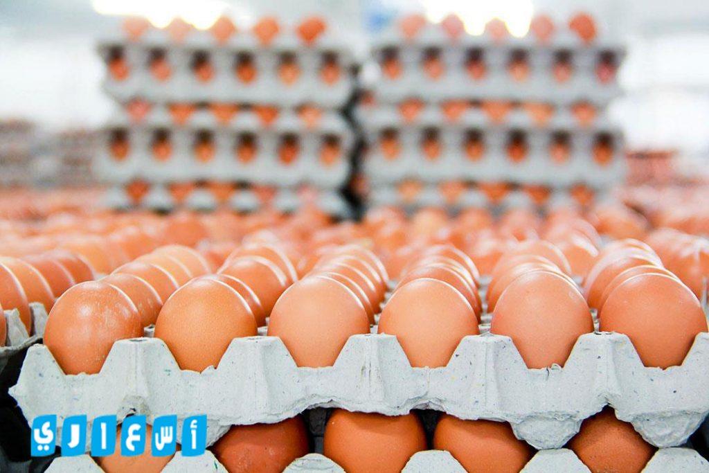 أسعار بورصة البيض فى مصر اليوم بتاريخ 7-8-2019
