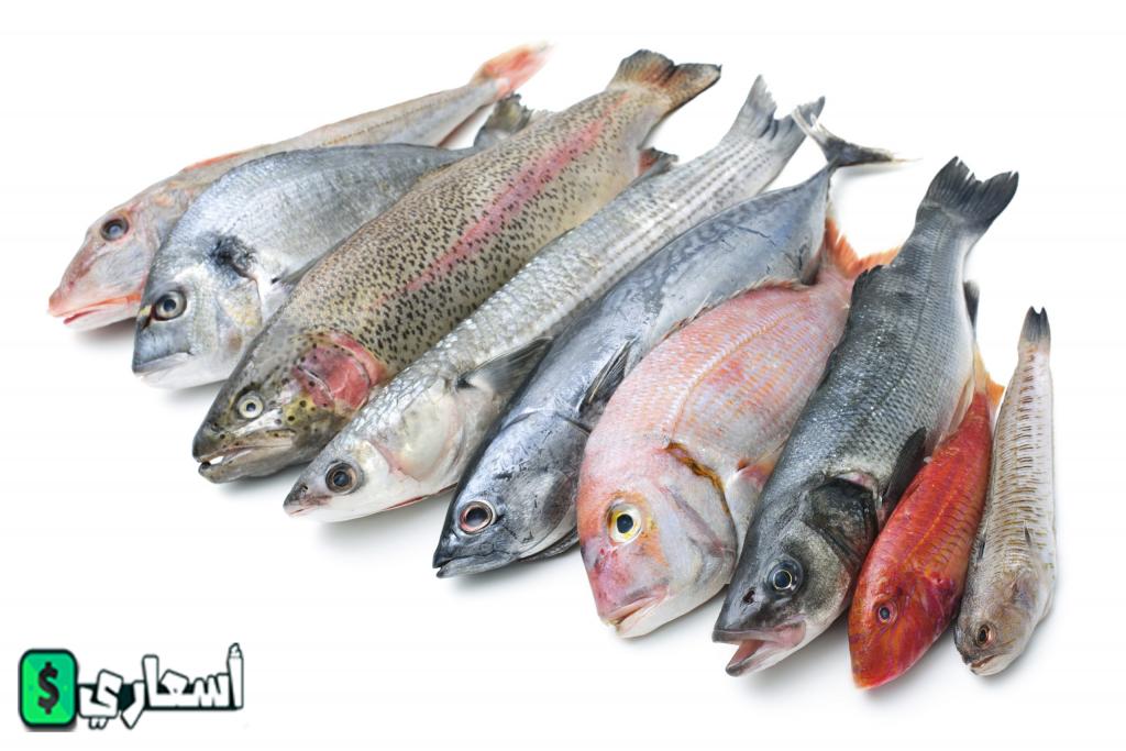 سعر السمك فى سوق العبور اليوم